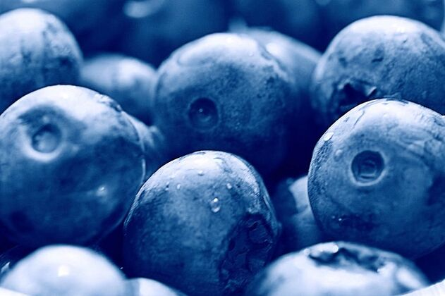 blueberries for the ketogenic diet